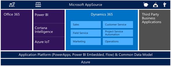 Microsoft Dynamics 365 Licensing and Data Models