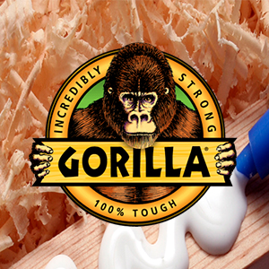 Case Study - Gorilla Glue distribution software
