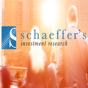 Case Study - Shaeffer's Investment Research