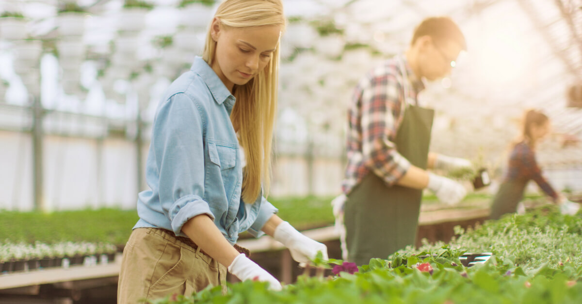 Labor management for greenhouse growers